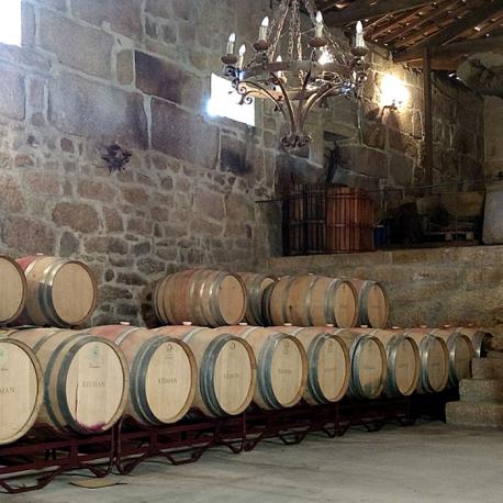Pack Vinhos Kelman