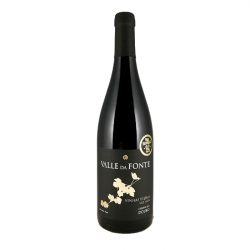 Valle da Fonte Reserve Old Vines Red 2014