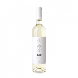 Brejinho da Costa Harvest White 2019