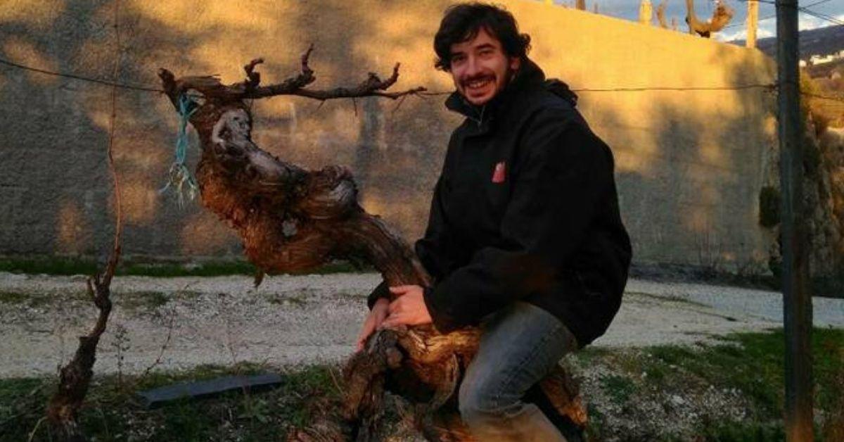 António Madeira Vinhos