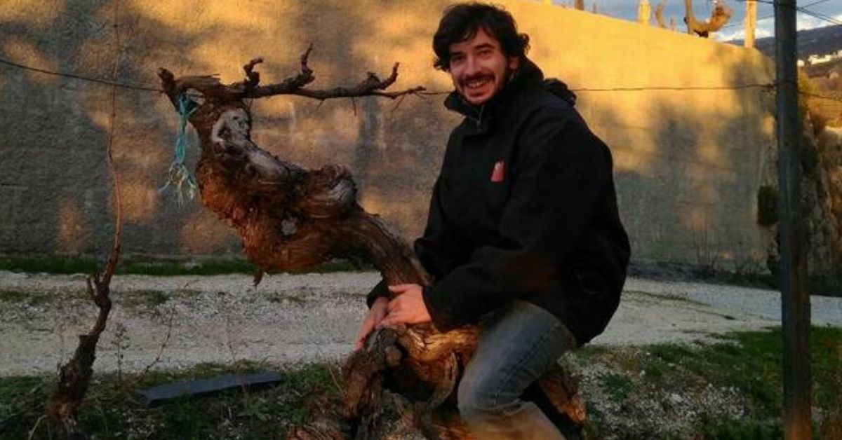 António Madeira Wines